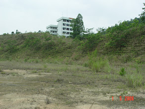 Photo: CHN-UR12 The stadium/college site five years later. Fully stable with native plants established. No sign of erosion