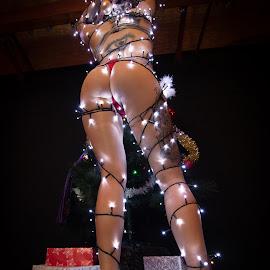 Christmas Tree by Gary Bradshaw - Nudes & Boudoir Boudoir