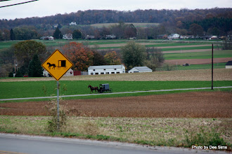 Photo: (Year 3) Day 136 - A Very Typical Amish Scene (Lancaster County, Pennsylvania, USA)