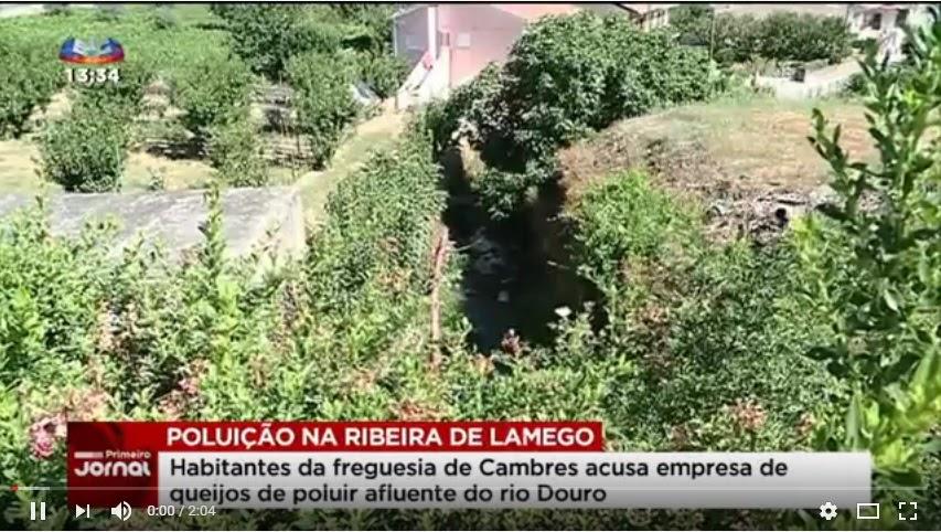 Vídeo - População revoltada com poluição da ribeira de Cambres