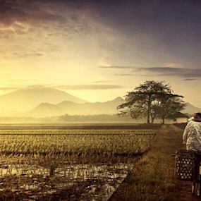 by Mohamad Fadli - Instagram & Mobile Other