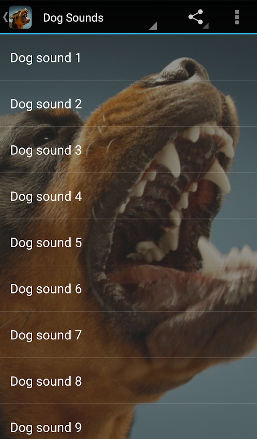 Dog Sounds- screenshot