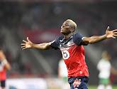 Lille vindt de opvolger van Osimhen ook in Jupiler Pro League
