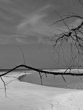 Photo: #2 Originally shot January 3, 2004 in the Bahamas