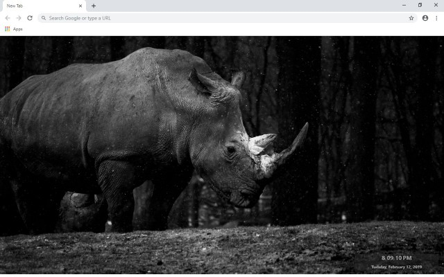 Rhino New Tab & Wallpapers Collection