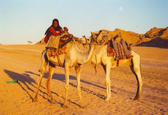 REGINA NEL DESERTO - EGITTO di dansantos