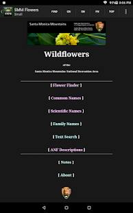 SMM WildFlowers (Unreleased)- screenshot thumbnail
