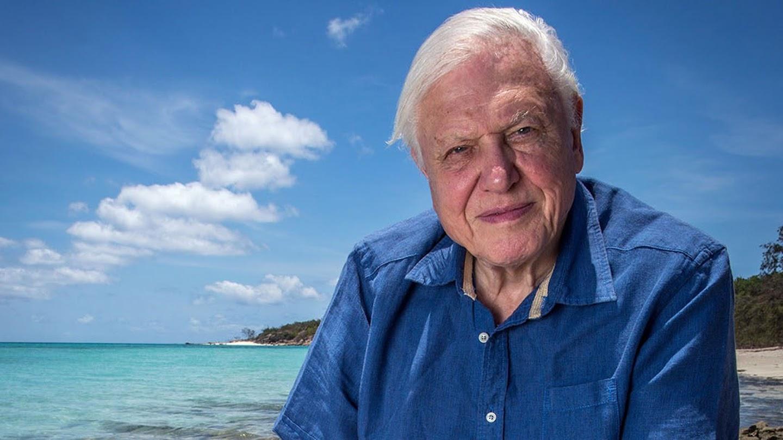 Watch David Attenborough's Great Barrier Reef live