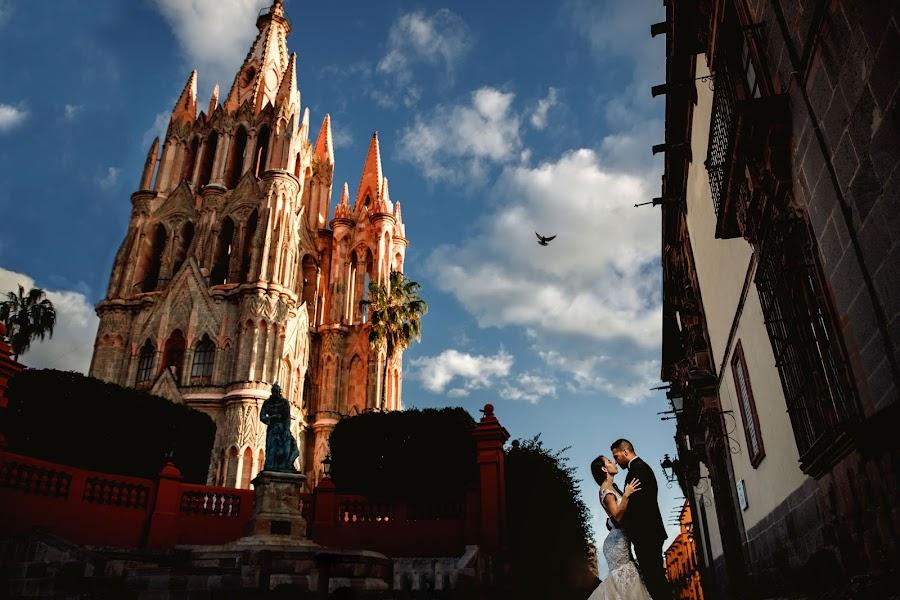 Wedding photographer Barbara Torres (BarbaraTorres). Photo of 28.10.2019