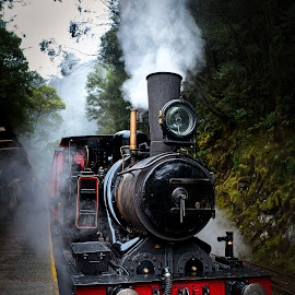The Historic Lyell No.3 by Garry Dosa - Transportation Trains ( historic, outdoors, vintage, old, aged, steam, train,  )