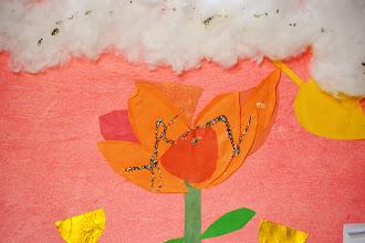 Photo: Yasmeen Porter - 1st Grade North Avondale Montessori Cincinnati, Ohio, U.S.A.