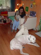 Photo: Какие страшные собаки! С алабайкой Вайдат и ее детьми