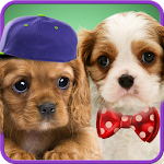 Talking puppies 1.4 Apk