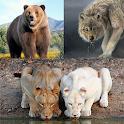 Wild Animals icon