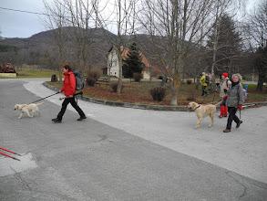 Photo: Hund sekcija