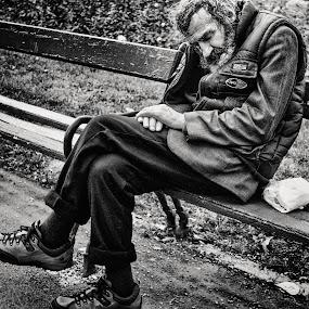 It's not enough by Alex Cruceru - People Street & Candids ( old, poor, beard, sleeping, alone, people, man )
