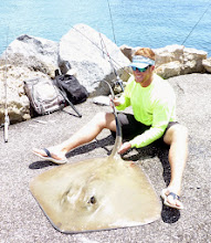 Photo: This stingray was caught (and released) at the South Venice Jetty.... it weighed approx 100 pounds.