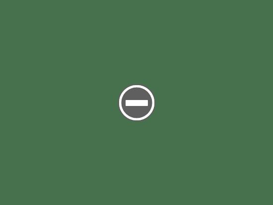 Contenido de BRIO® 33891 Tren de Mercancías  y Túnel