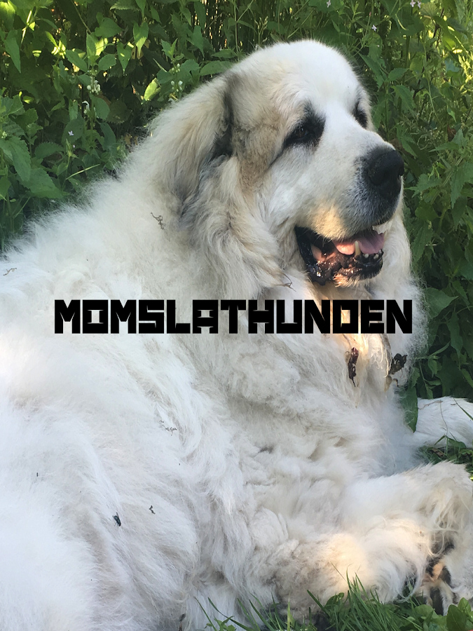 Momslathunden- screenshot