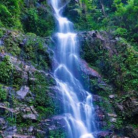 by Sambit Bandyopadhyay - Nature Up Close Water (  )