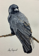 Photo: Old Crow.  watercolor.  5x7