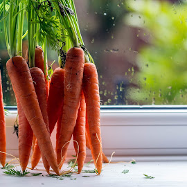 Carrots on a windowsill by Adele Price - Food & Drink Fruits & Vegetables ( orange, carrots, vegetables,  )