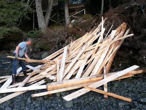 Photo: he chucked all the wood down to the beach. I organized them into stacks of 3 for him to carry to his boat on high tide.