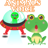 Animals Voice on UFO and Opera