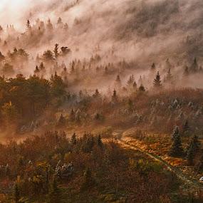 The atmosphere at Ještědu by Evžen Takač - Landscapes Sunsets & Sunrises ( inversion, mountains, fog, czech republic, forest, road, sunrise )