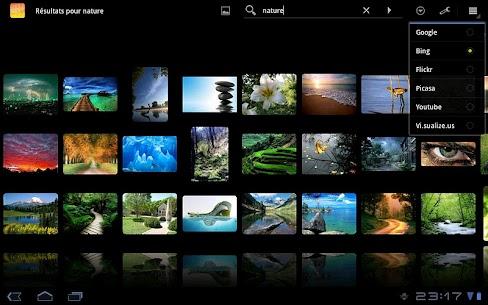 DroidIris+ : Image Search v3.6.4 [Paid] APK 4