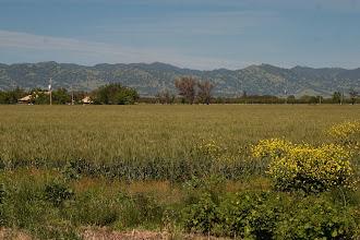 Photo: Russell Ranch - Kinsella Road