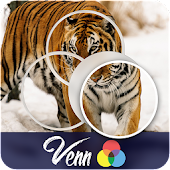 Venn Tigers: Circle Jigsaw