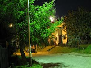 """Photo: Modrzew """"by night"""""""
