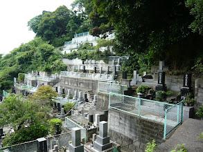 Photo: 乗誓寺 墓苑 海を一望できる自然あふれるロケーションです。 お気軽にホームページよりお問い合わせ下さい。 http://jyouseiji.com/