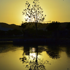 by Varun Jain - Nature Up Close Water
