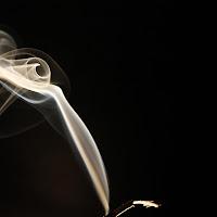 Solo fumo. di