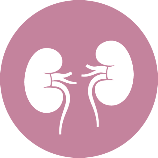 Kidney Cancer (app)