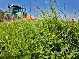 Verpachte grond zelf in gebruik nemen als landbouwer, kan dat?