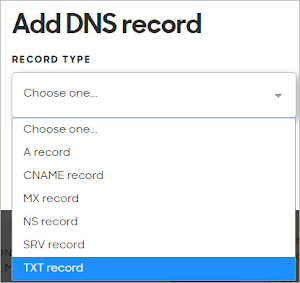 TXT record is selected on the list of Record Types