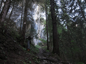 Photo: ... that climbs steeply through forest ...