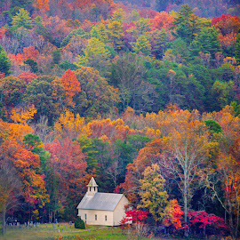 Fall Church by John Larson - Landscapes Mountains & Hills ( fall, color, church, trees, cemetery )