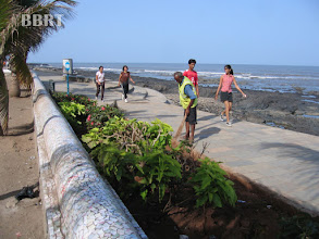 Photo: Promenade washed & cleaned 2008