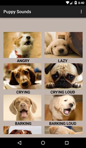 Puppy Sounds