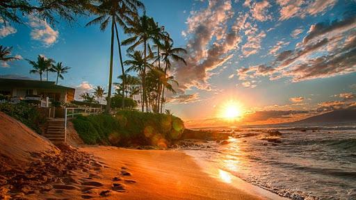 Hawaii Live Wallpaper