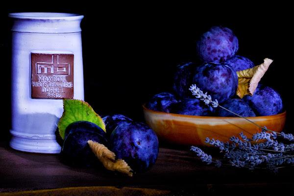 Prunes et lavande