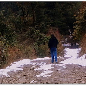 A walk.. by Shafaly Sharma - Landscapes Mountains & Hills ( hills, mountains, nature, snow, people )