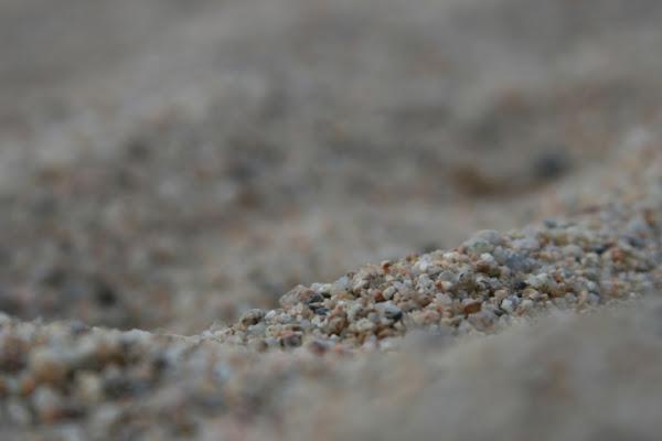 Spiaggia o deserto? di sbarbazza