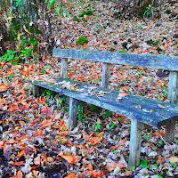 tempo d'autunno di