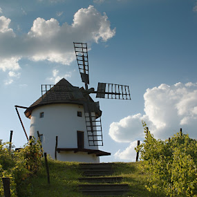 summer comfort by Martin Namesny - Buildings & Architecture Other Exteriors ( clouds, old, vineyard, contentment, windy, solar, architecture, historic, mill, stairs, sky, comfort, peace, summer )