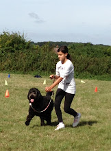 Photo: Tilly Labradoodle and Tamsin in the Spoon Race Slalom